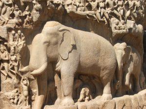 Fresque éléphant