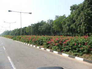 Bd Chandighar