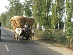 Route Inde